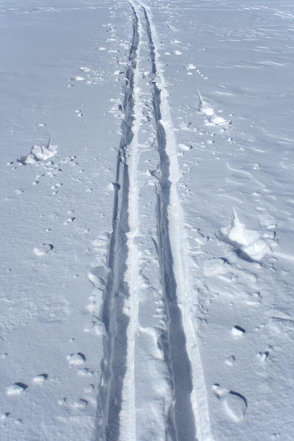 Download Ski tracks in the snow stock image. Image of trek, white - 2083147