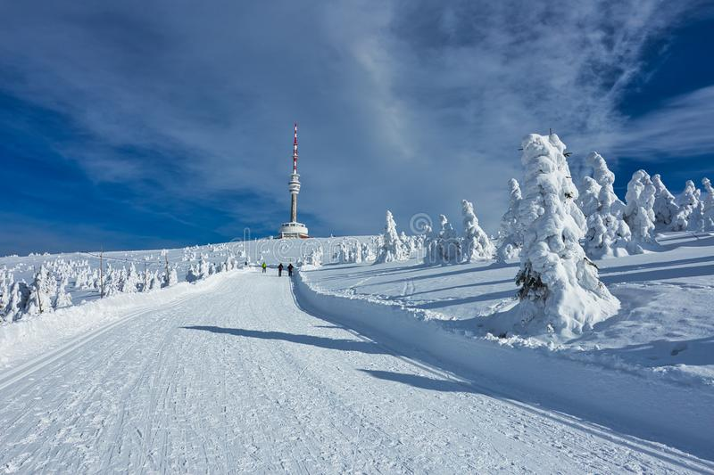 Crosscountry Skiing Way in Jesenik Mountain and Television Transmitter Praded. Ski Trail or Crosscountry Skiing Way in Jesenik Mountain and Television royalty free stock photo