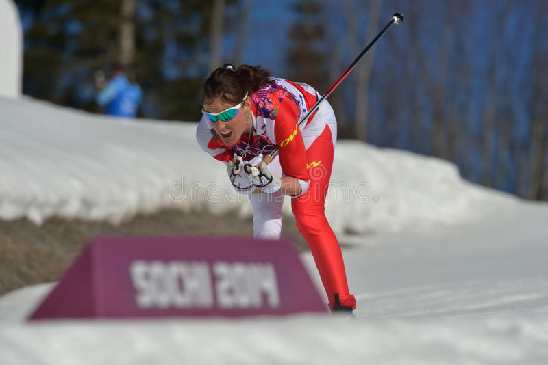 Ski transnational images stock