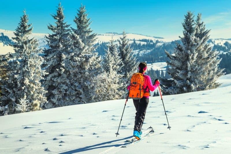 Ski voyageant sur les montagnes, la Transylvanie, Carpathiens, Roumanie, l'Europe photos libres de droits