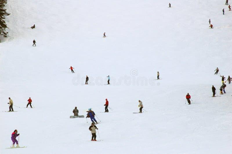 ski2 royaltyfri foto