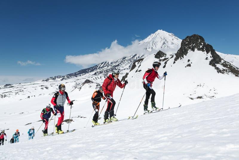 Skibergsteigen Meisterschaften: Gruppenski-Bergsteigeraufstieg auf Skis auf Hintergrundvulkan stockbild
