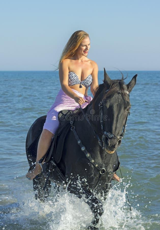 Skicklig ryttarinna och häst i havet royaltyfria foton