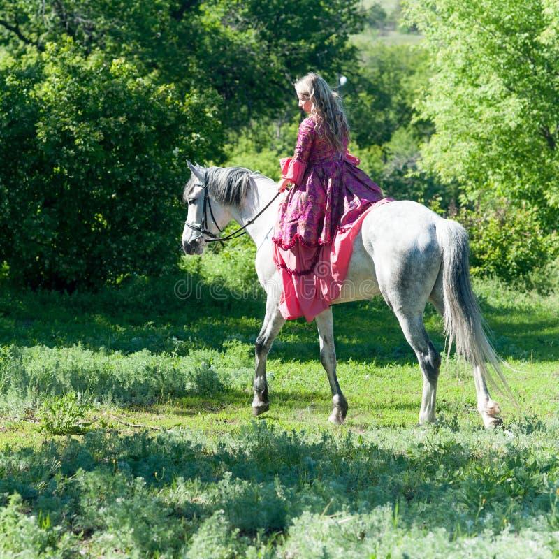 Skicklig ryttarinna på den vita hästen royaltyfria bilder