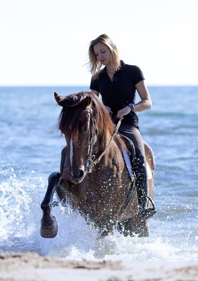 Skicklig ryttarinna på stranden royaltyfria foton