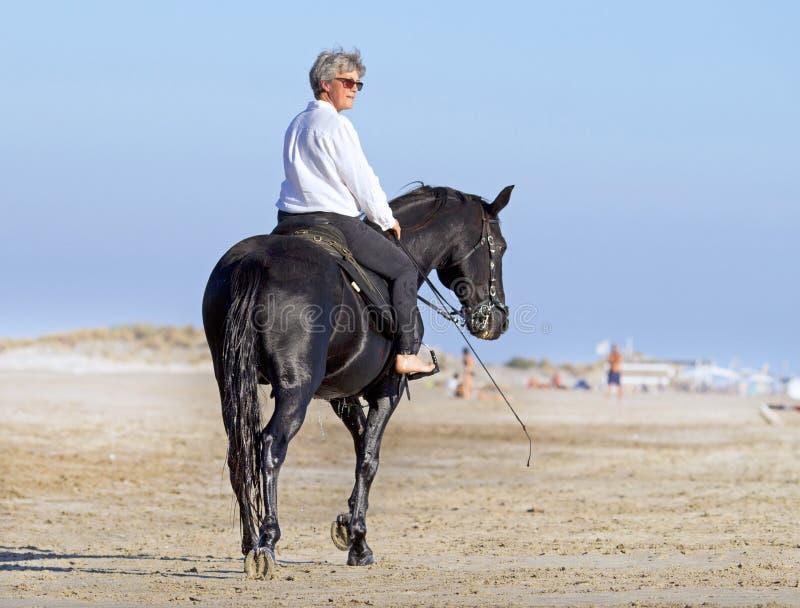 Skicklig ryttarinna på stranden fotografering för bildbyråer