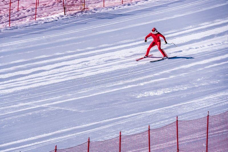 Skidåkare som försöker att sakta ner längst ner av stupet på hastighetsutmaningen och FIS-hastighet Ski World Cup Race på solmaxi royaltyfri foto