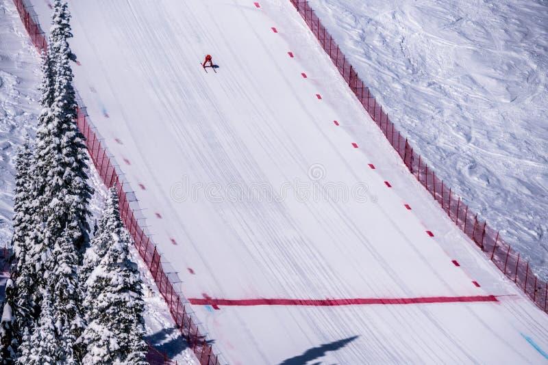 Skidåkaren som springer ner den branta hastighetsskidåkninglutningen på hastighetsutmaningen och FIS-hastighet Ski World Cup Race royaltyfria foton