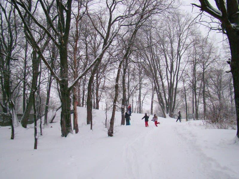 Skidåkningbarn i vinter arkivbilder