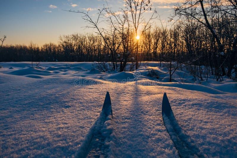 Skida på kall vintersoluppgångbakgrund arkivfoton