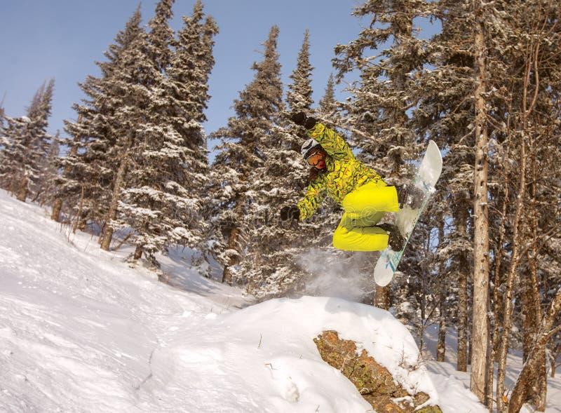 Skida; snowboarding; snowboard; sportar; arbete; gyckel; man; le; royaltyfri bild