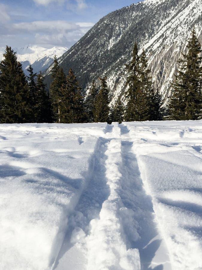 skida snowspår arkivbilder