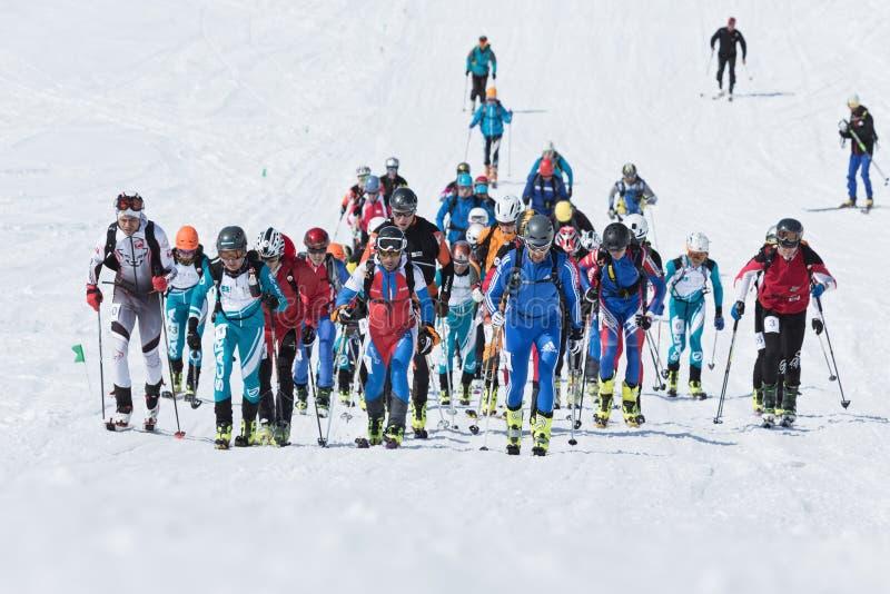 Skidar bergsbestigning: gruppen av skidar bergsbestigaren som klättring till berget skidar på royaltyfri fotografi