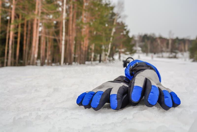 Skidar modernt mode för vintern handskar för extremt och varmt vattentätt slut royaltyfria foton