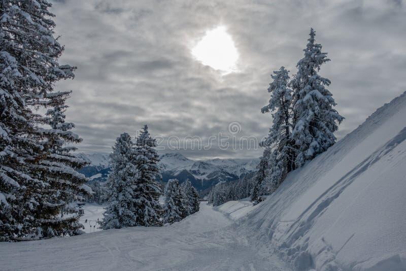 Skidar område med fantastiskt väder royaltyfria foton