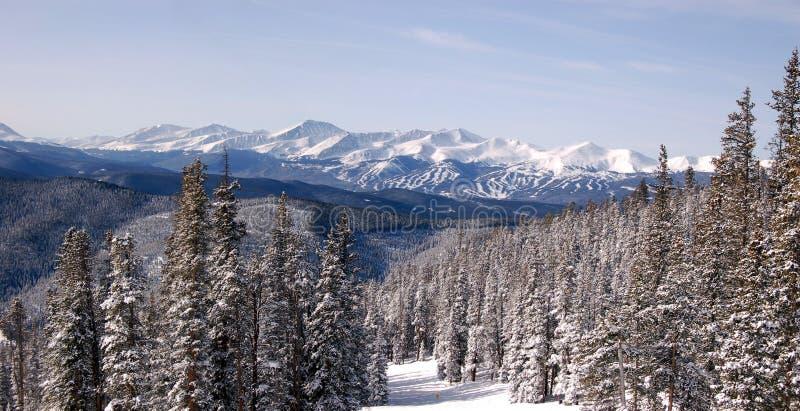 Skient les Rocheuses image libre de droits