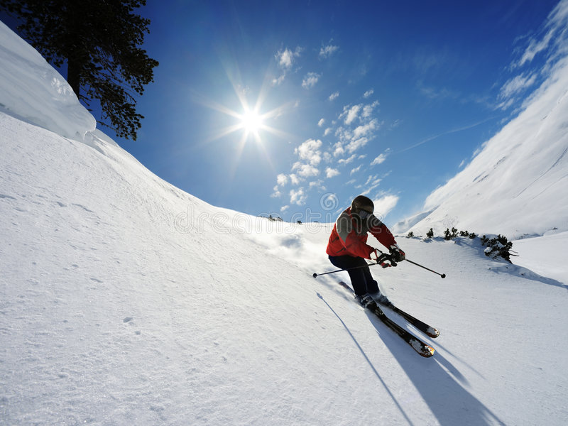 Download Skier stock photo. Image of overcast, agility, extreme - 8855560