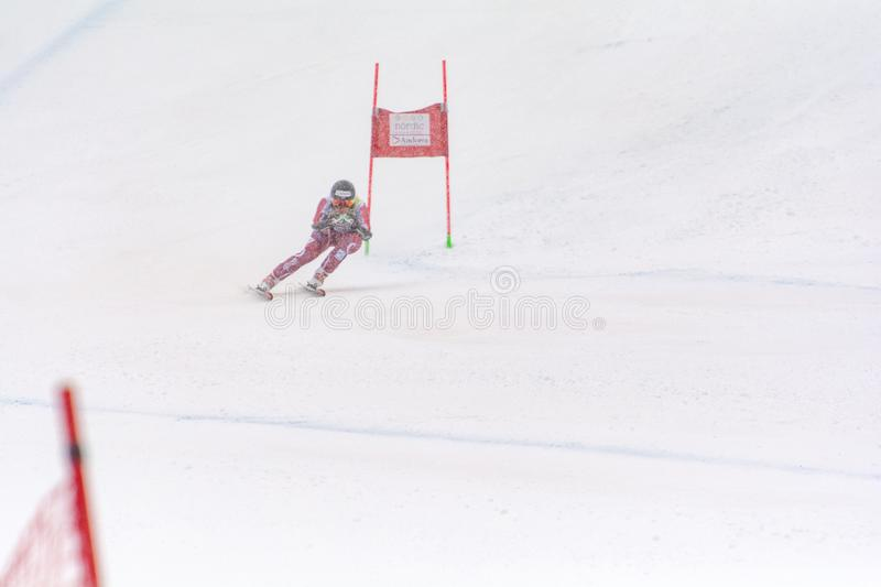 Skier in competes during the Audi FIS Alpine Ski World Cup Women`s Super Combined on February 28, 2016 in Soldeu, Andorra. Audi FIS Alpine Ski World Cup - Women` royalty free stock photo