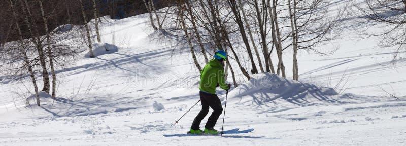 Skier downhill na pista de esqui de neve com árvores de pássaros imagens de stock royalty free