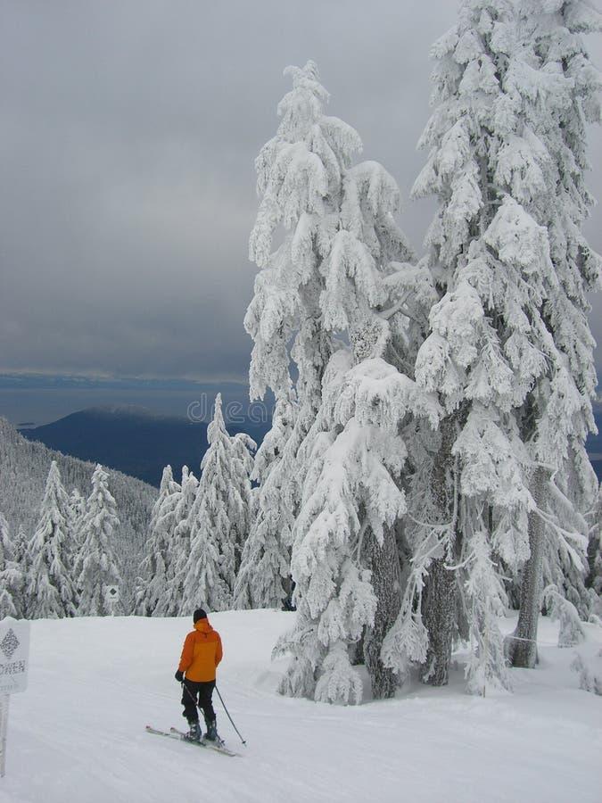 Skier in orange stock images