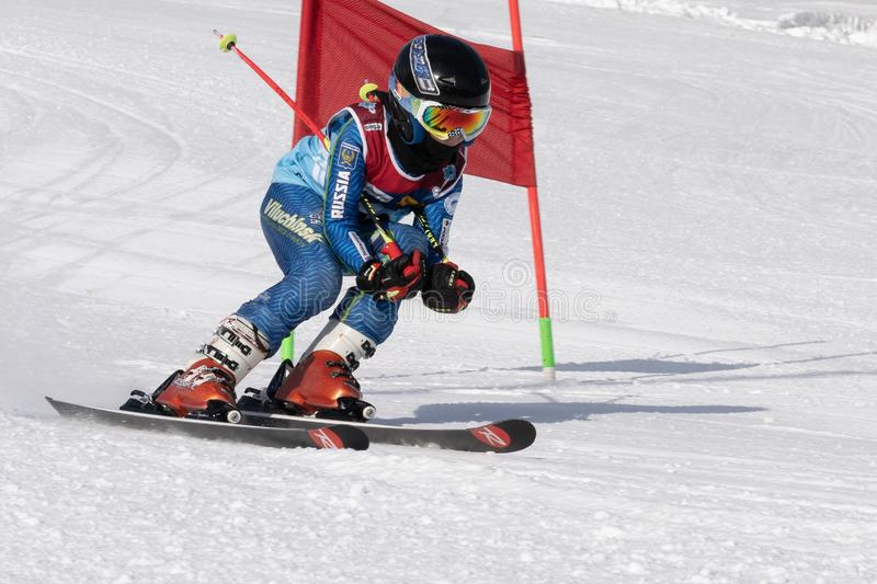 Skier skiing down mountain slope during competition alpine skiing giant slalom stock photos