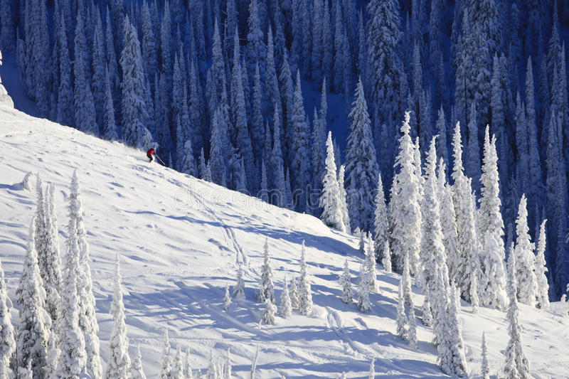 Skier On Snow Covered Mountainside. A skier is traveling down a snow covered mountainside already lined with ski tracks. Horizontal shot stock image