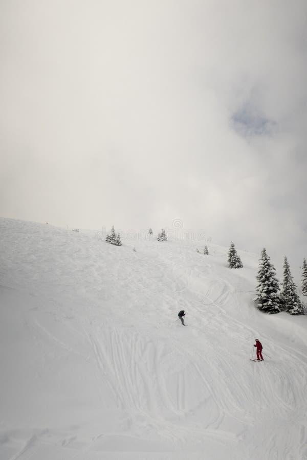 skiers fotos de stock