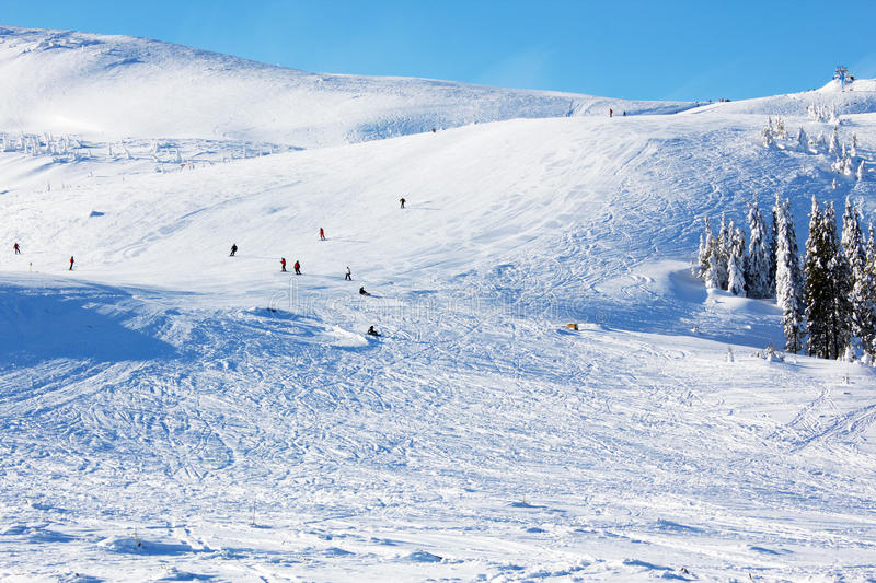 Download Skiers stock image. Image of downhill, mountainside, impetuous - 27394435