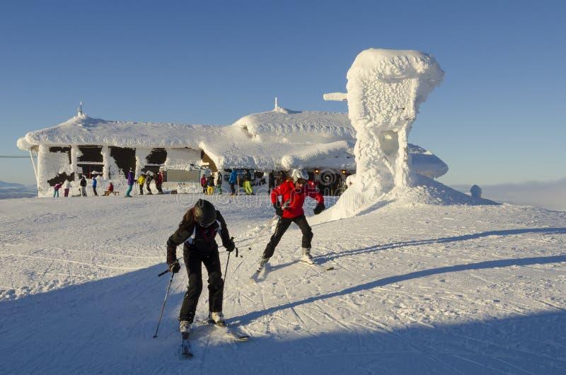 Skiers på toppmöteplateuen Ãre fotografering för bildbyråer