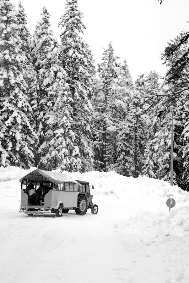 Download Skiers travelling stock photo. Image of transportation - 14073130