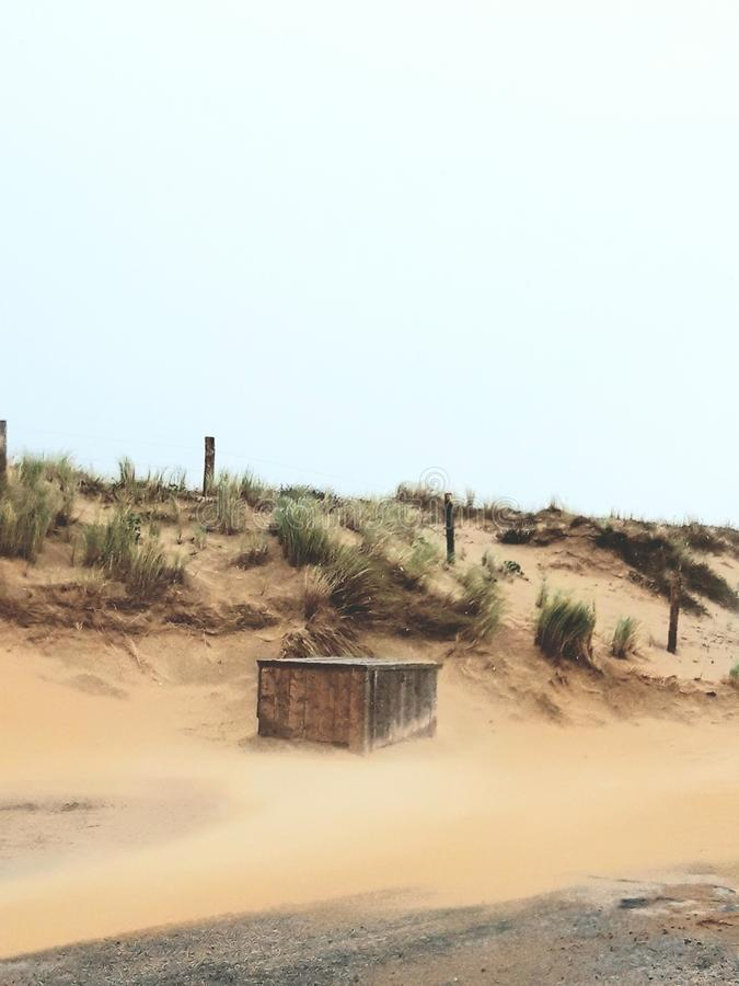 Windy beach royalty free stock images