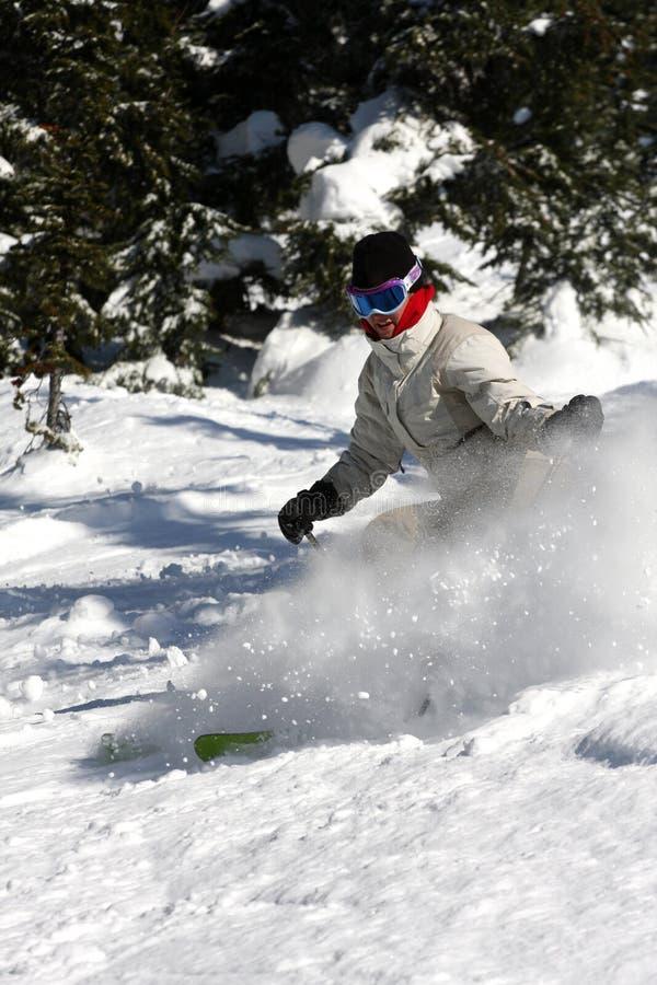 skieur alpestre photos stock