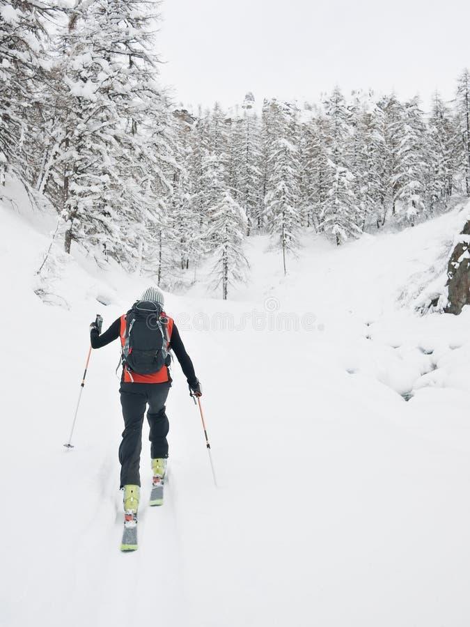 Skieur de Backcountry photographie stock