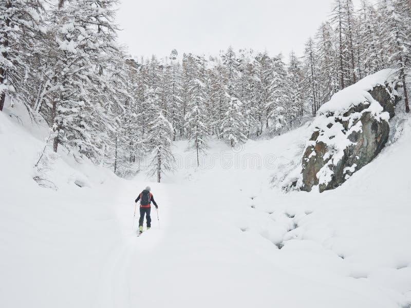 Skieur de Backcountry image libre de droits