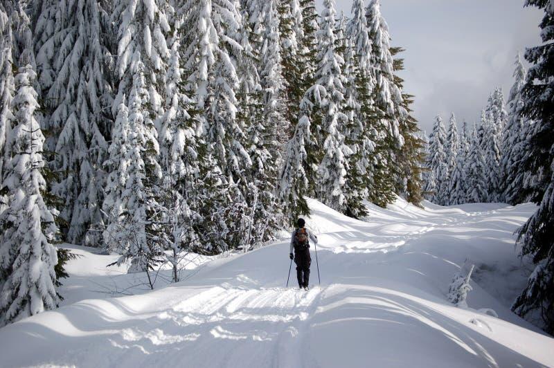 Skieur de pays en travers images stock