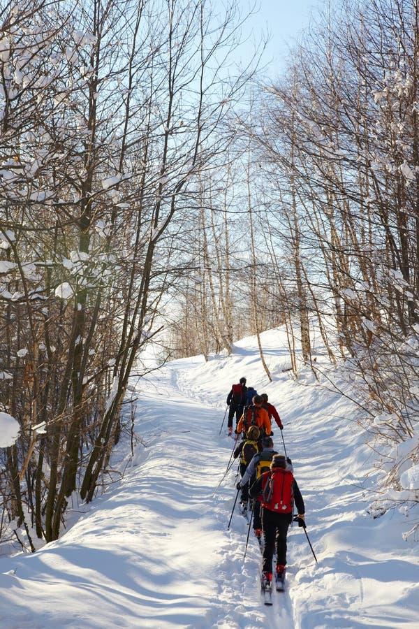 skieurs backcountry de groupe photo libre de droits