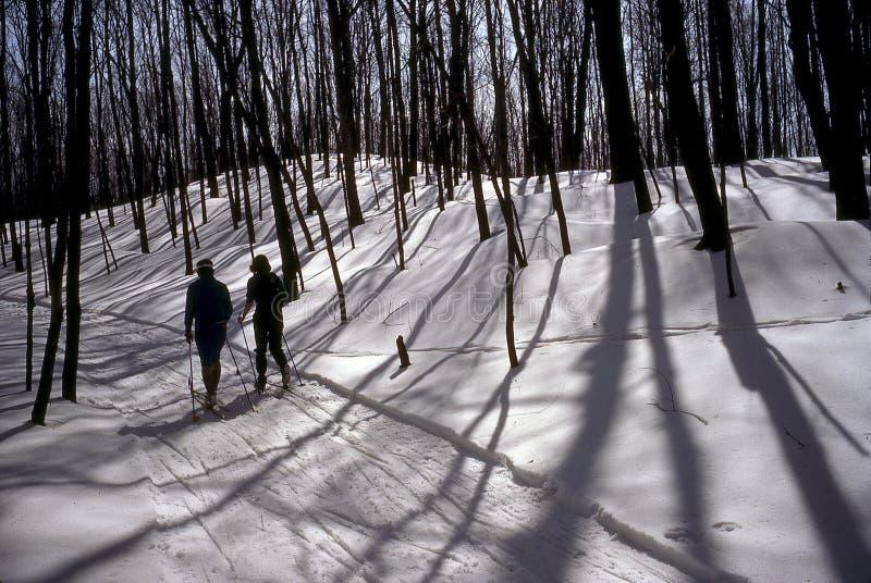 Skieurs de pays croisé photo libre de droits