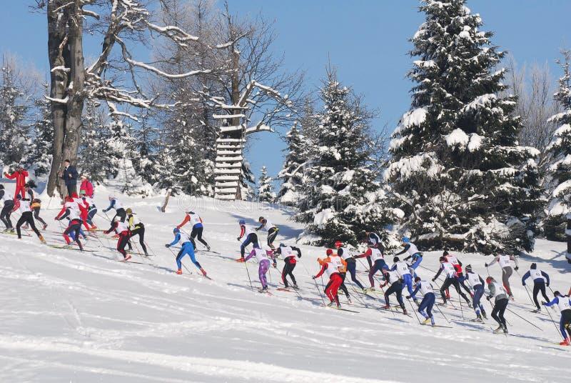 Skieurs de pays croisé courant dans la forêt images libres de droits