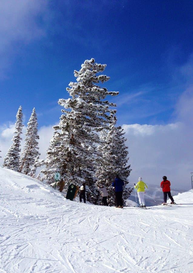 Skieurs sur la montagne photos stock