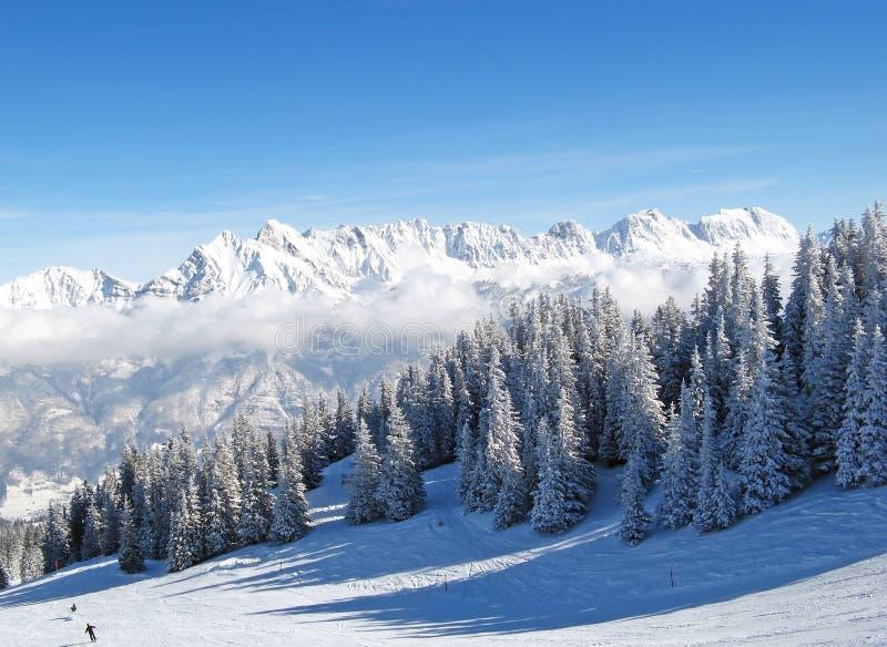 Skifahrensteigung stockfoto