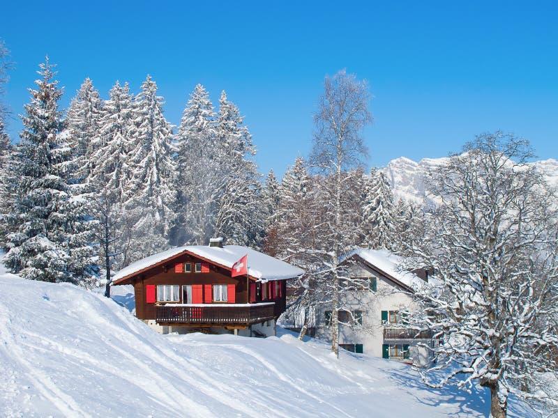 Skifahrensteigung lizenzfreie stockfotos