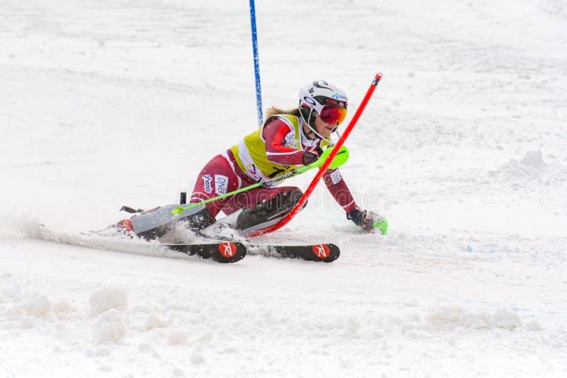 Skifahrer konkurriert herein während das des Super Audi-FIS alpine Ski World Cup Womens kombiniert am 28. Februar 2016 in Soldeu, stockbilder