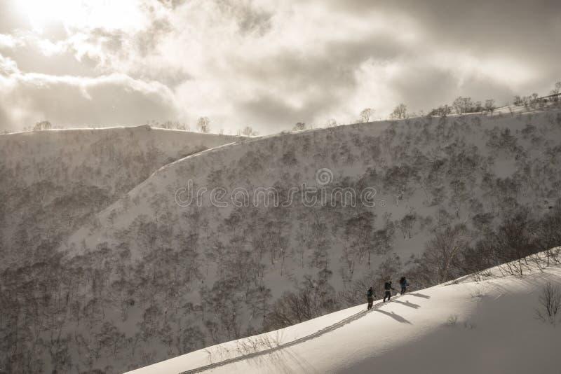 Skifahrerskifahren auf Berg an einem bewölkten Tag lizenzfreie stockbilder