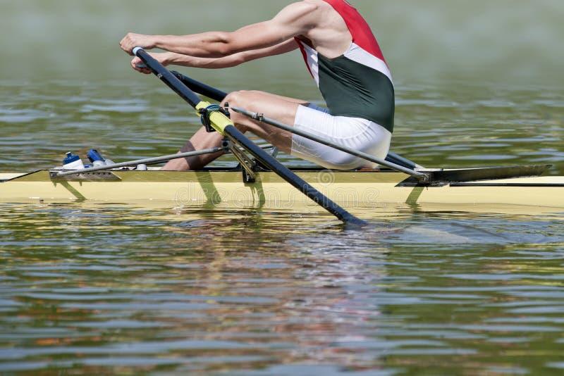skiff rower стоковое изображение rf