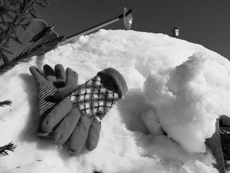 Skihandschuhe, Skis und Skipfosten im Schnee unter dem Baum im Winter oder im Fr?hling stockfotos