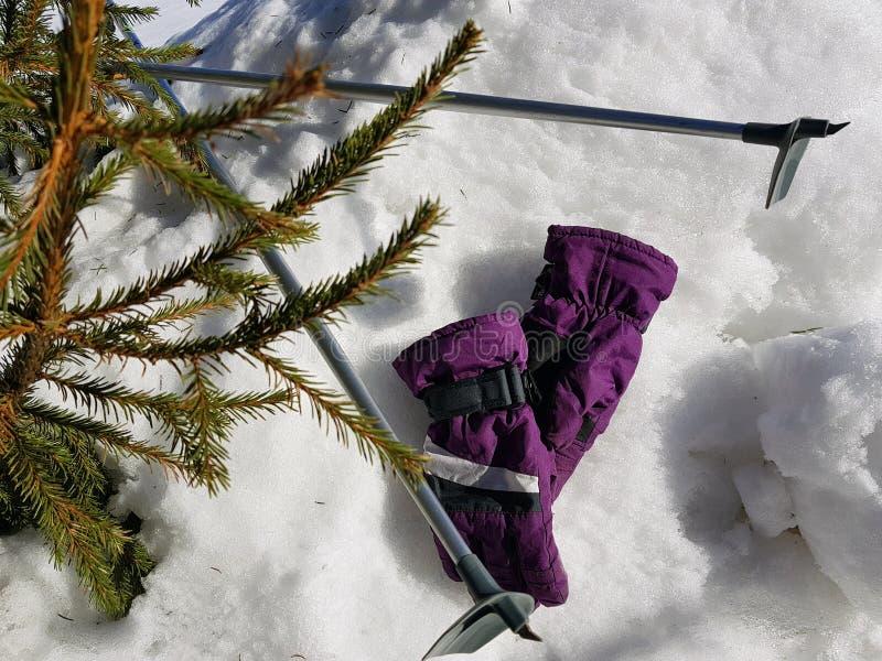 Skihandschuhe, Skis und Skipfosten im Schnee unter dem Baum im Winter oder im Fr?hling lizenzfreie stockbilder