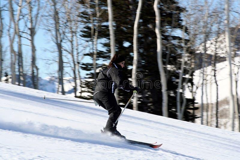 Download Skiier fêmea novo imagem de stock. Imagem de alpine, excitar - 526601