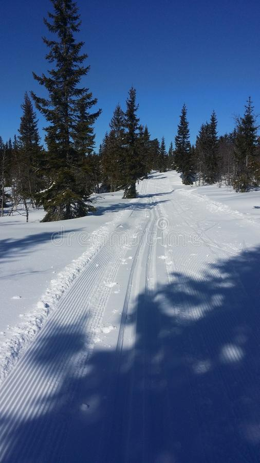 Skiimg in de zon royalty-vrije stock foto