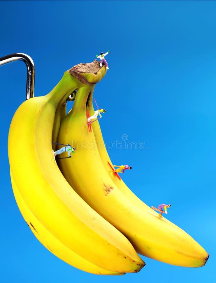 Skiing on bananas royalty free stock photography