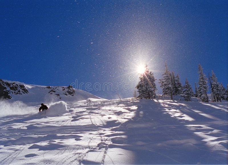 Skiing in the powder royalty free stock photos